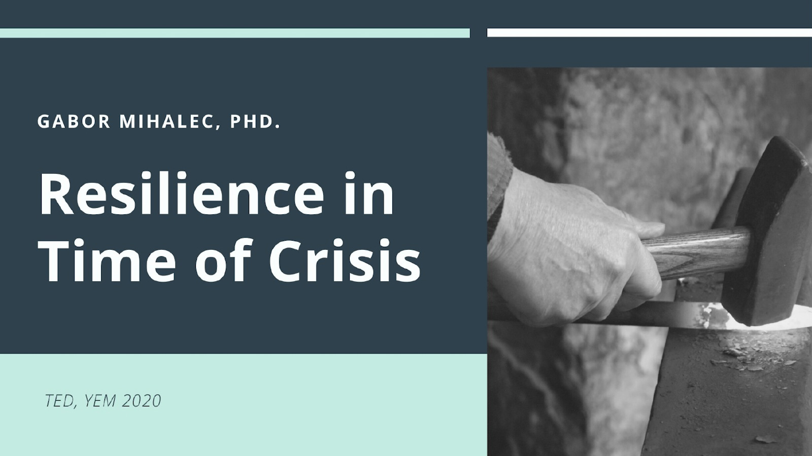 Resilience in time of crisis presentation